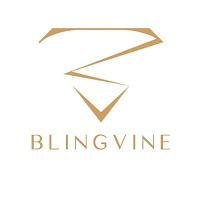 BlingVine discount coupon codes